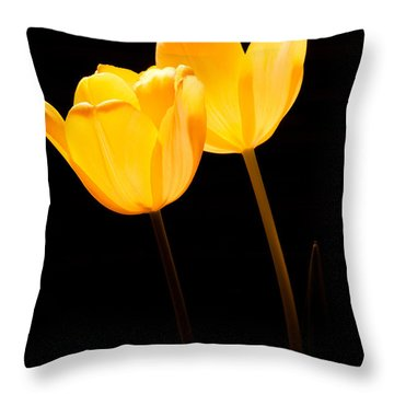 Glowing Tulips II Throw Pillow
