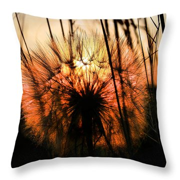 Going To Seed Throw Pillow by Steven Reed