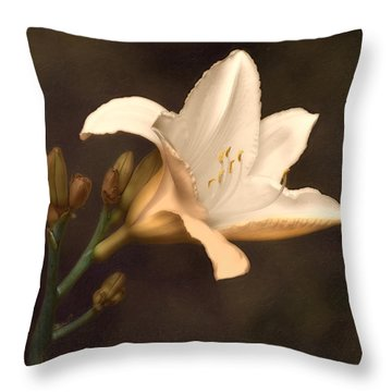Golden Daylily Throw Pillow