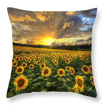 Golden Evening Throw Pillow by Debra and Dave Vanderlaan