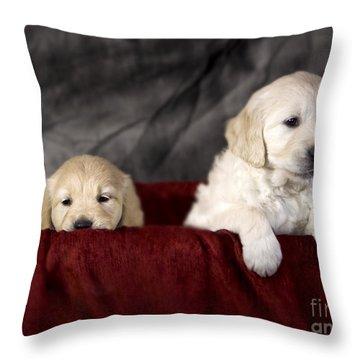 Golden Retriever Puppies Throw Pillow by Angel  Tarantella