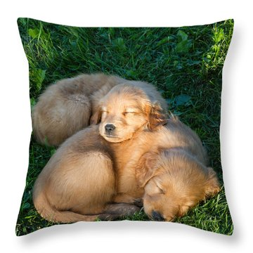 Golden Retriever Puppies Sleeping Throw Pillow by Linda Freshwaters Arndt