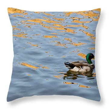 Golden Ripples Throw Pillow by Keith Armstrong