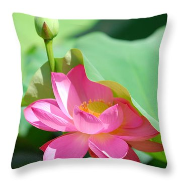 D48l-96 Water Lily At Goodale Park Photo Throw Pillow