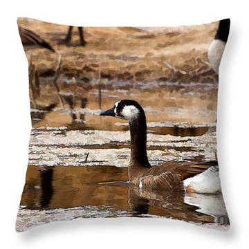 Goose Pond Throw Pillow