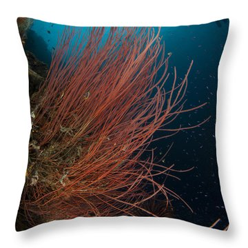 Grand Sea Whip With Diver Throw Pillow by Steve Jones