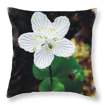 Grass Of Parnassus Throw Pillow