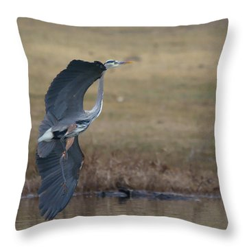 Great Blue Flight Manuever Throw Pillow