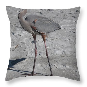 Throw Pillow featuring the photograph Great Blue Heron On The Beach by Christiane Schulze Art And Photography