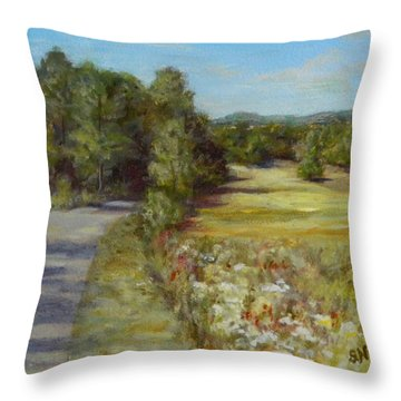 Greenville Road Throw Pillow