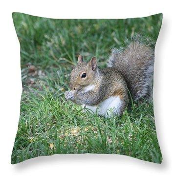 Grey Squirrel Throw Pillow by Lori Tordsen