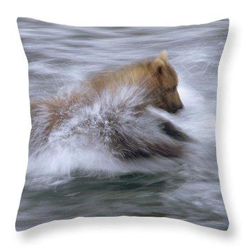 Grizzly Bear Chasing Fish Throw Pillow by Matthias Breiter