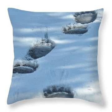 Grizzly Bear Tracks Throw Pillow