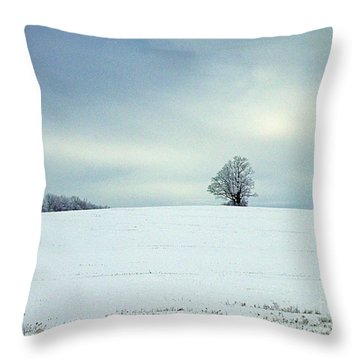 Throw Pillow featuring the photograph Guardian by Christian Mattison