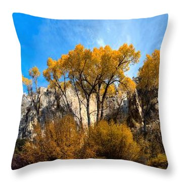 Throw Pillow featuring the photograph Guardians by David Andersen