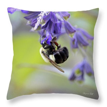 Hanging In There Throw Pillow by Suzanne Gaff