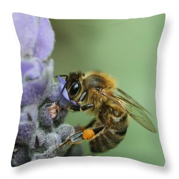 Happy Bee Throw Pillow by Joy Watson