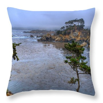 Harbor Seal Cove Throw Pillow