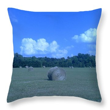 Haystacks Throw Pillow by Stacy C Bottoms