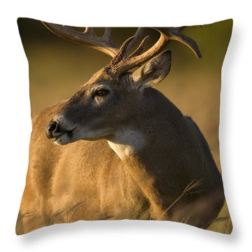 Healthy Throw Pillow