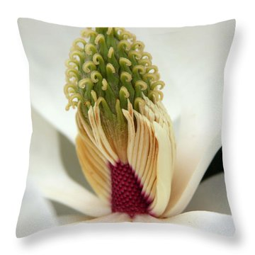Heart Of The Magnolia Throw Pillow by Andy Lawless