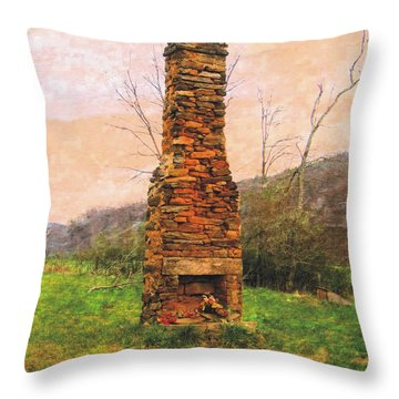 Hearth Without A Home Throw Pillow