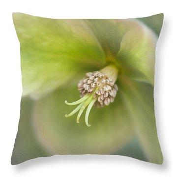Helleborus Two Throw Pillow