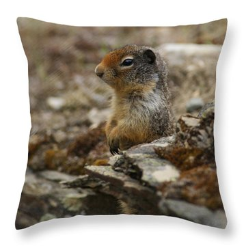 Herman The Rock Chuck Throw Pillow