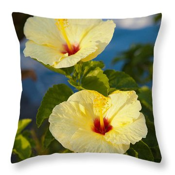 Throw Pillow featuring the photograph Bright Yellow Hibiscus by Roselynne Broussard