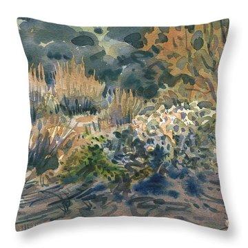 High Desert Flora Throw Pillow by Donald Maier