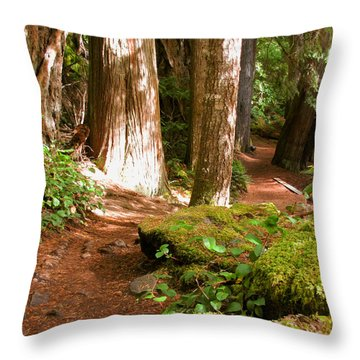 Hiking Trail Throw Pillow by Katie Wing Vigil