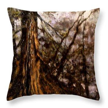 Hillside Ancient Throw Pillow