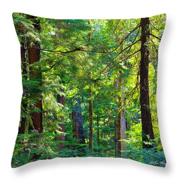 Hoh Rain Forest Throw Pillow