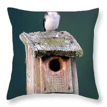 Home Sweet Home Throw Pillow by Bill Wakeley