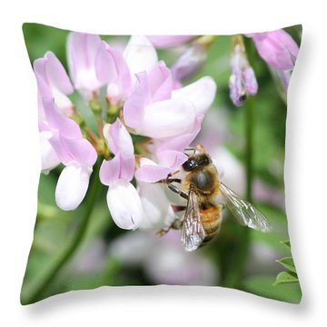 Honeybee On Crown Vetch Throw Pillow by Lucinda VanVleck