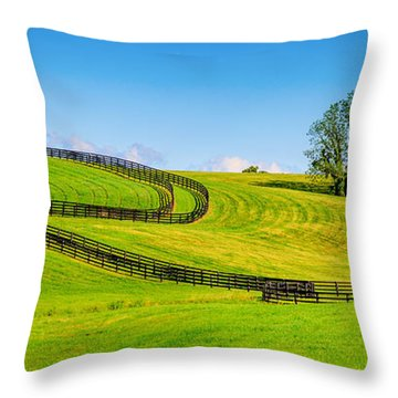 Horse Farm Fences Throw Pillow by Alexey Stiop