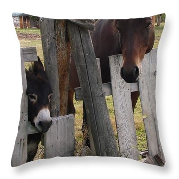 Throw Pillow featuring the photograph Horsing Around by Athena Mckinzie