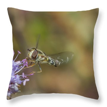 Throw Pillow featuring the photograph Hoverefly - Syrphus Vitripennis by Jivko Nakev