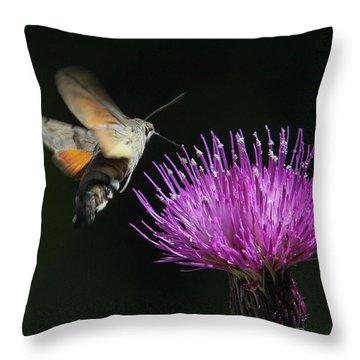 Throw Pillow featuring the photograph Hummingbird Hawk-moth - Macroglossum Stellatarum by Jivko Nakev