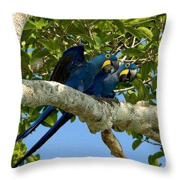 Hyacinth Macaws, Brazil Throw Pillow by Gregory G. Dimijian, M.D.