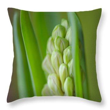 Hyacinth Throw Pillow by Silke Magino