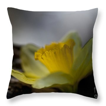 I Promise Throw Pillow by Wilma  Birdwell