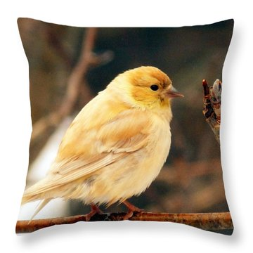 I See Spring Throw Pillow