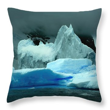 Throw Pillow featuring the photograph Iceberg by Amanda Stadther