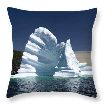 Throw Pillow featuring the photograph Iceberg by Liz Leyden