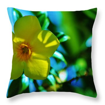 In Light And Shadow Throw Pillow
