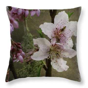 Into Spring Abstract Throw Pillow