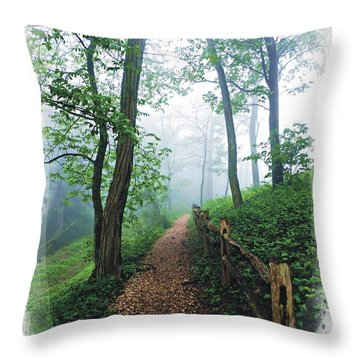 Into The Mist On The At Throw Pillow