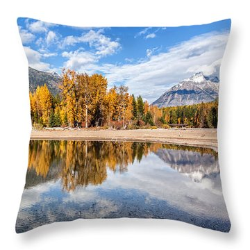 Throw Pillow featuring the photograph Into The Wild by Aaron Aldrich
