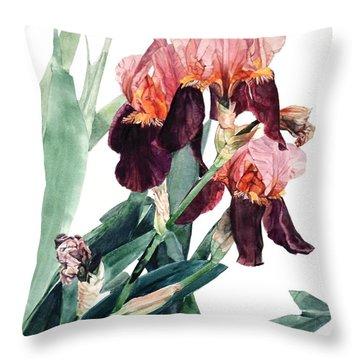 Watercolor Of A Pink And Maroon Tall Bearded Iris I Call Iris La Forza Del Destino Throw Pillow